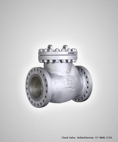 check-valve-bolted-bonnet-12-600-c12a