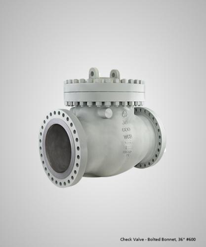 check-valve-bolted-bonnet-36-600
