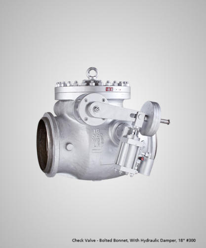 check-valve-bolted-bonnet-with-hydraulic-damper-18-300