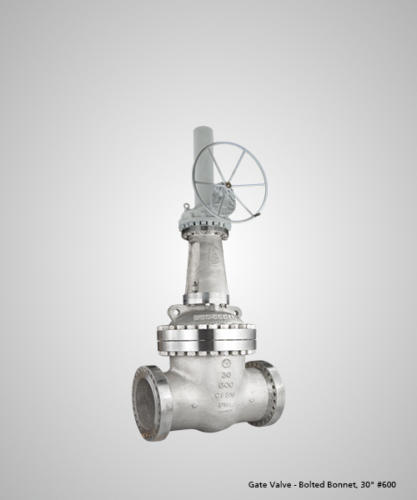 Gate Valves - Bolted Bonnet Manilal Brothers