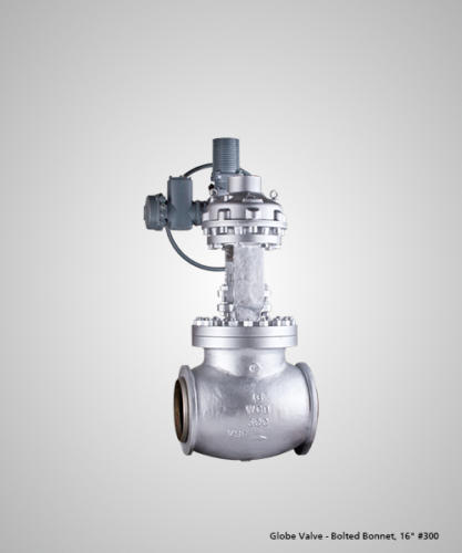 globe-valve-bolted-bonnet-16-300