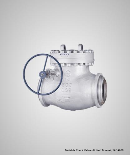 testable-check-valve-bolted-bonnet-14-600